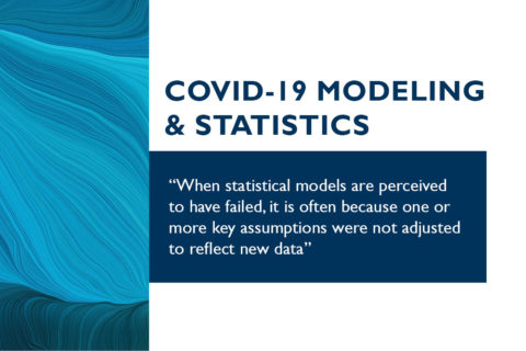COVID-19 Modeling and Statistics